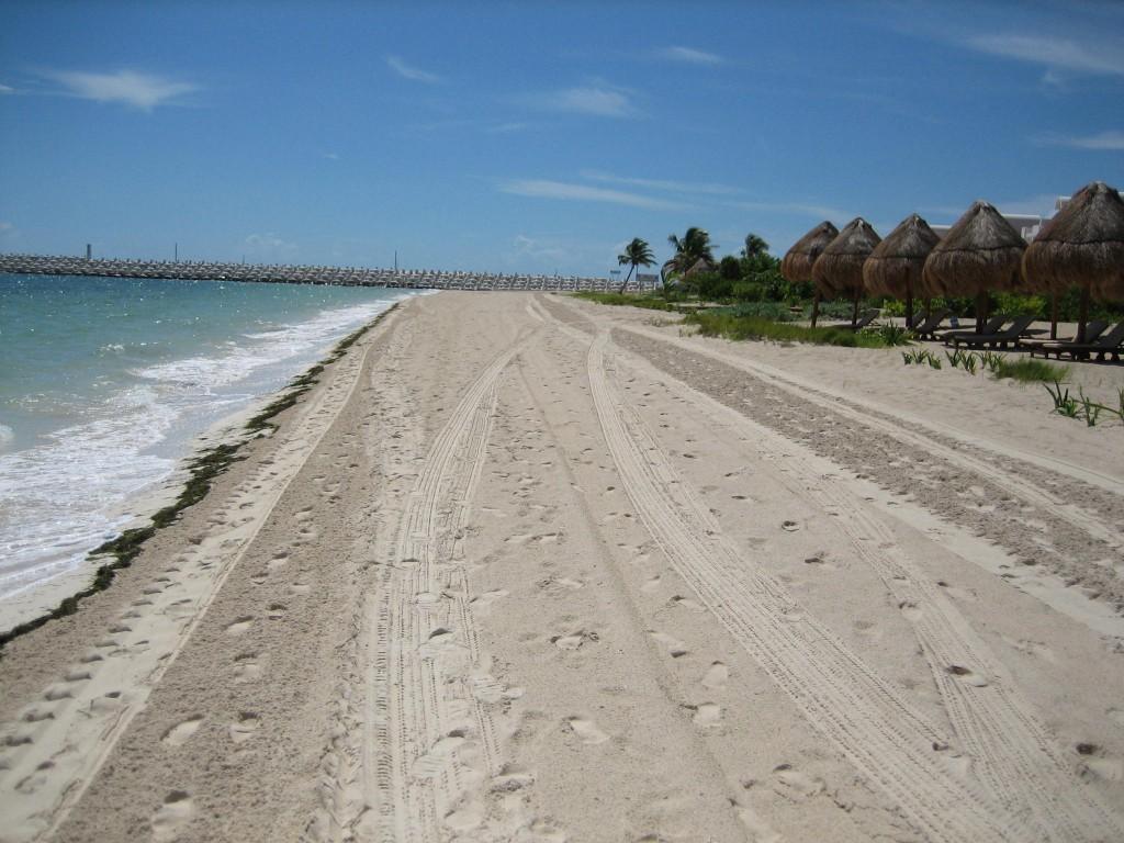 Beachfront La Amada